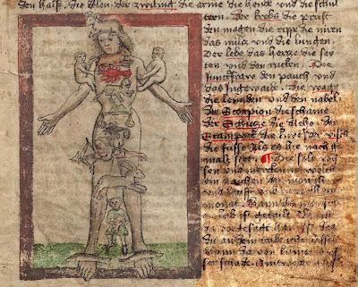 German medieval zodiac man