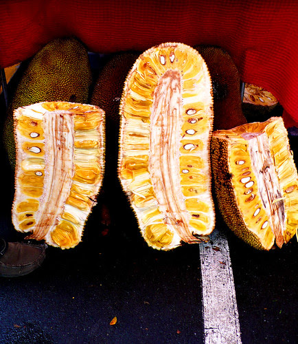 salcedo jackfruit