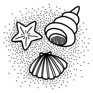 貝海の生き物夏のイラスト無料白黒イラスト素材