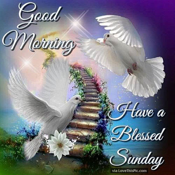 Good Morning Have A Blessed Sunday Beautiful Quote Pictures Photos