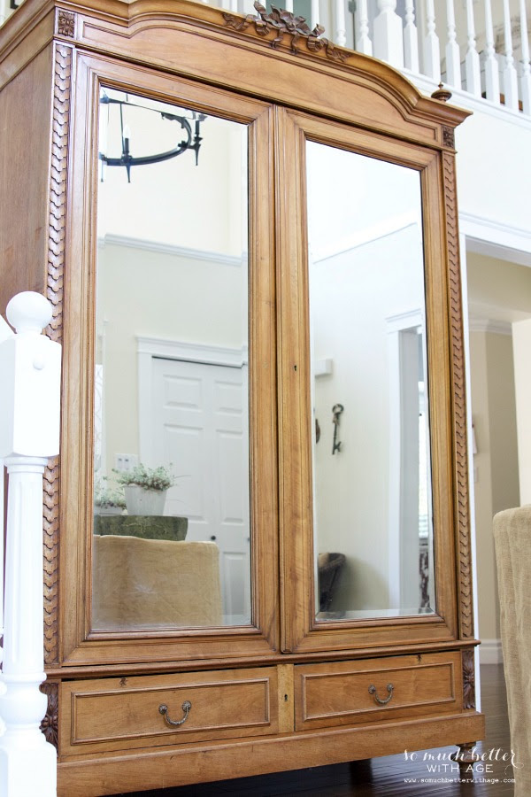 The Lion Wardrobe from So Much Better With Age | Friday Favorites at www.andersonandgrant.com