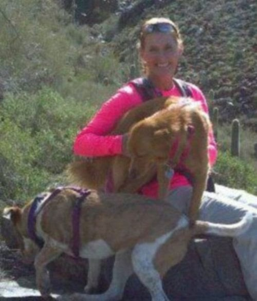 Su perrita sobrevive a un accidente de tránsito y la encuentra 65 días después en el desierto