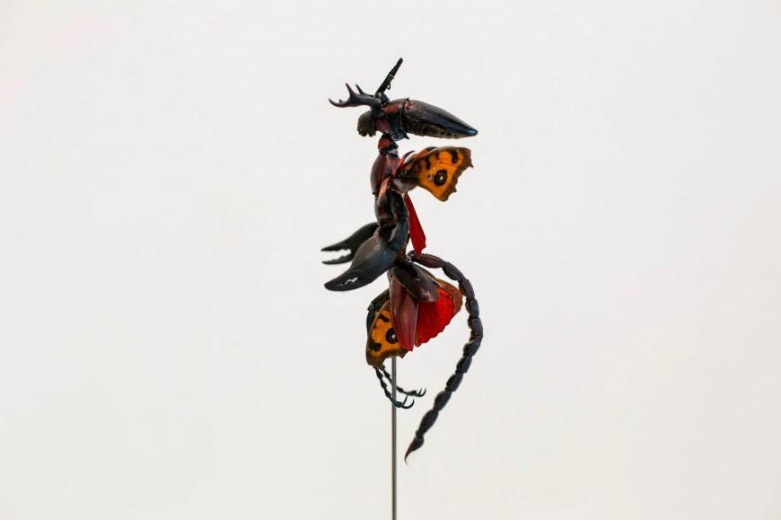 fee insecte graine morceau assemblage 03 870x579 Les fées de Cedric Laquieze