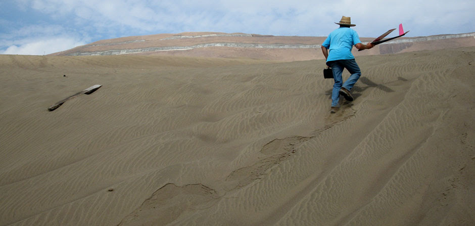 up the sand dune