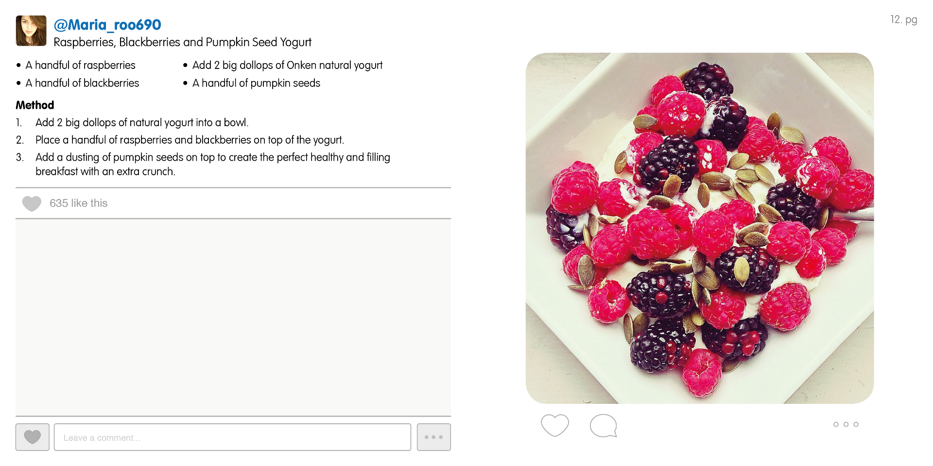photo Onken Instagram Recipe Book8_zpswuvz2tc6.png