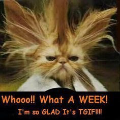 What A Week! I'm So Glad Its Friday Pictures, Photos, and ...