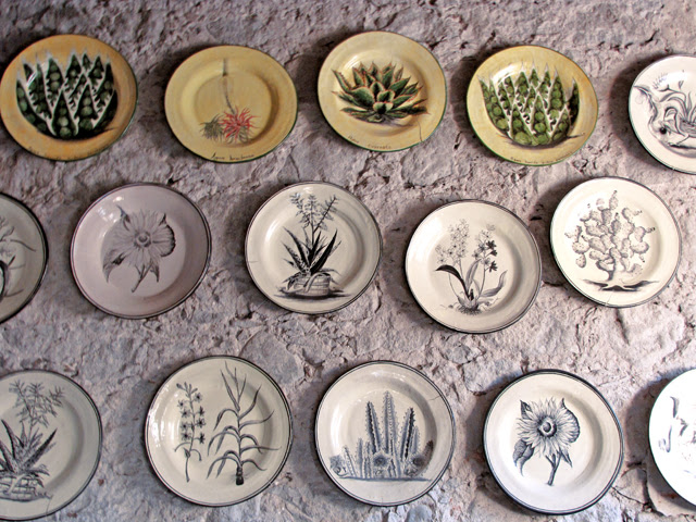 Botanical Platters