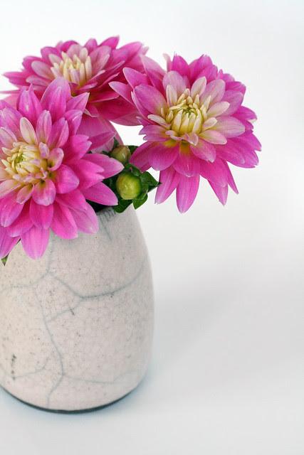 new pink vase