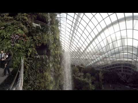 World's tallest indoor waterfall to be hosted by Safdie Architects' Changi Airport