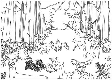 forest coloring pages coloringsuitecom