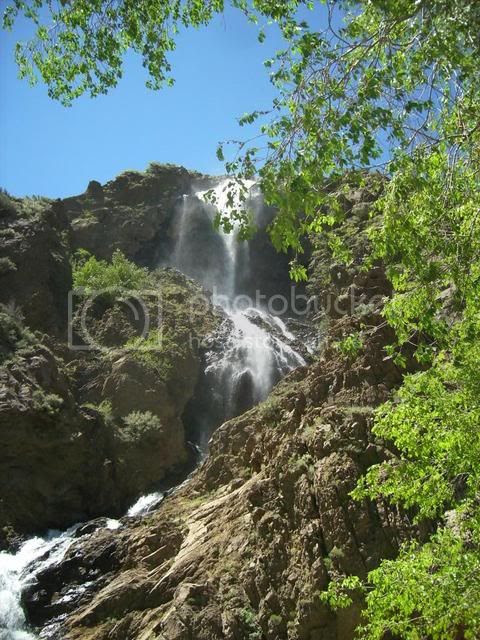 DSCI0131.jpg Ogden Canyon Waterfall image by charliex11