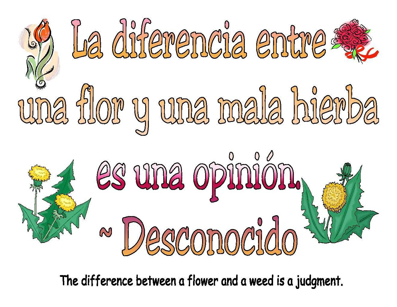 Spanish Quotes About Life. QuotesGram