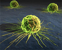 New study links radiation to chemicals trigger that links to cancer