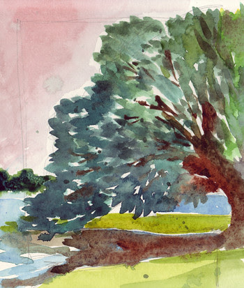 Tree at Mystic 2