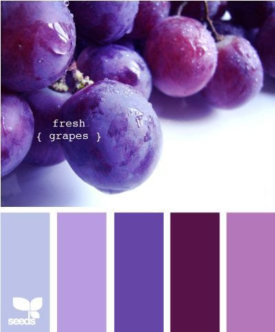 fresh grapes... color palette...