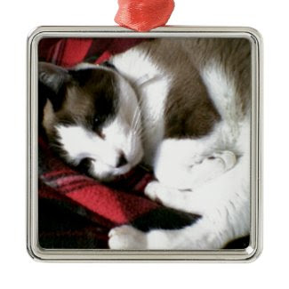 tartan kitty snoozing away square metal christmas ornament