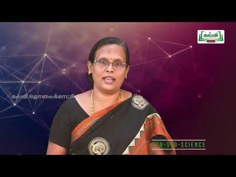 7th Science அளவீட்டியியல் அலகு 1 Kalvi TV