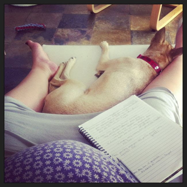 AUG 30: I'm working, I promise! Preggo belly & puppy protector and all. photo photo21_zps20c8626a.jpg