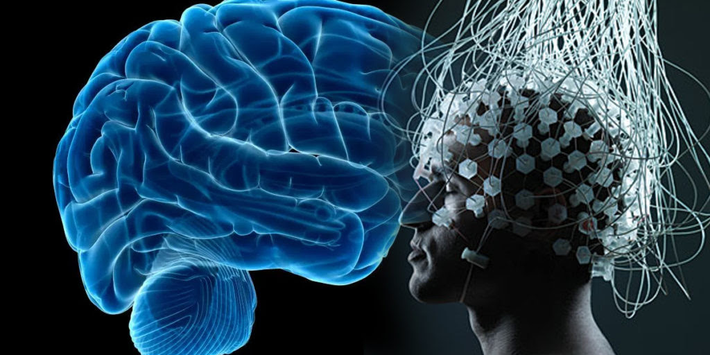 Brain Connected To The Internet For First Time - Science Vibe