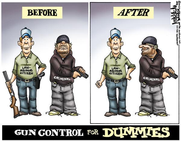 Gun Control for Dummies Cartoon