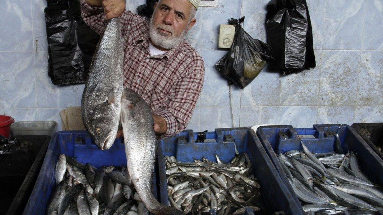 pescatore palestinese di Rafah