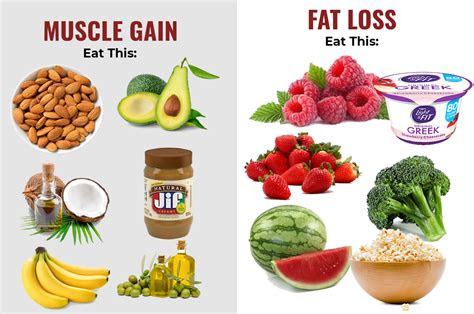 foods  eat lose weight  gain muscle astar tutorial