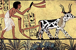 Painter of the burial chamber of Sennedjem