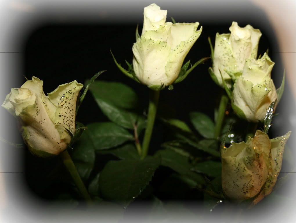 ...blomster på dagen..