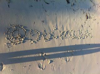 @obiwanseb on the beach