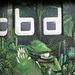 Graffiti de selva en Poblenou