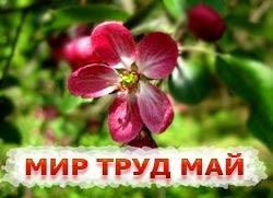 Праздник 1 мая - Праздник весны и труда (День труда)
