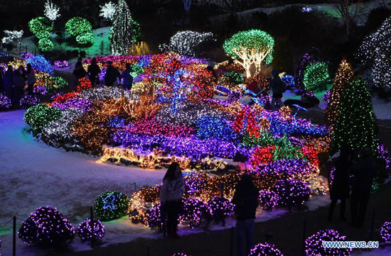 Night light show in South Korea  Peoples Daily Online