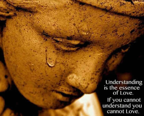 Wonderful Quote Understanding Is The Essence Of Love Daily
