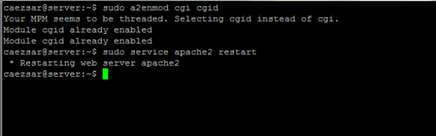 Enable Apache CGI