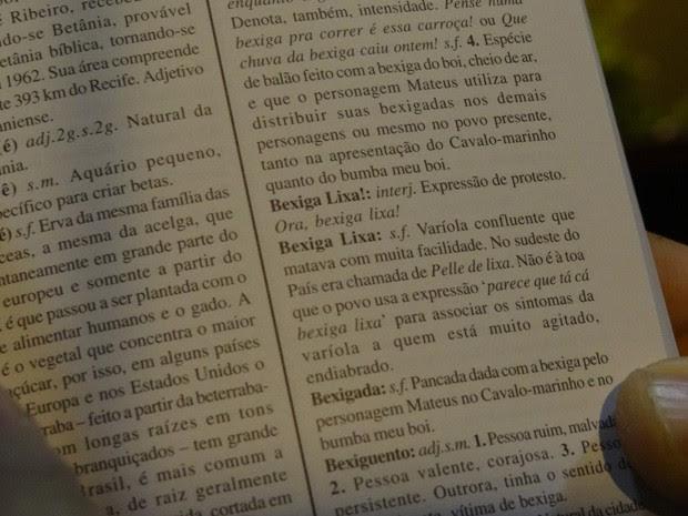 Dicionário de expressões de Pernambuco (Foto: Lorena Aquino/G1)