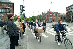 Bicycle Traffic in Copenhagen