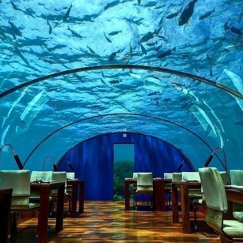 Ithaa Undersea Restaurant, остров Рангали, Мальдивы деликатесы, еда, настоящие гурманы, удивительное рядом