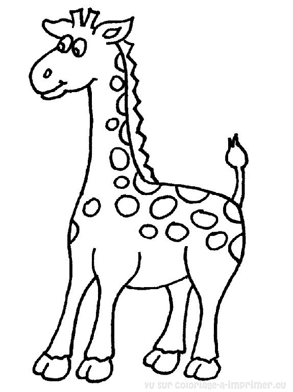 Coloriage à Imprimer Coloriage Girafe 055
