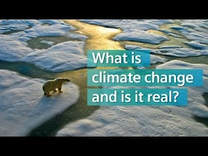 Climate Catastrophe and Resilience