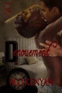 MediaKit_BookCover_Denouement