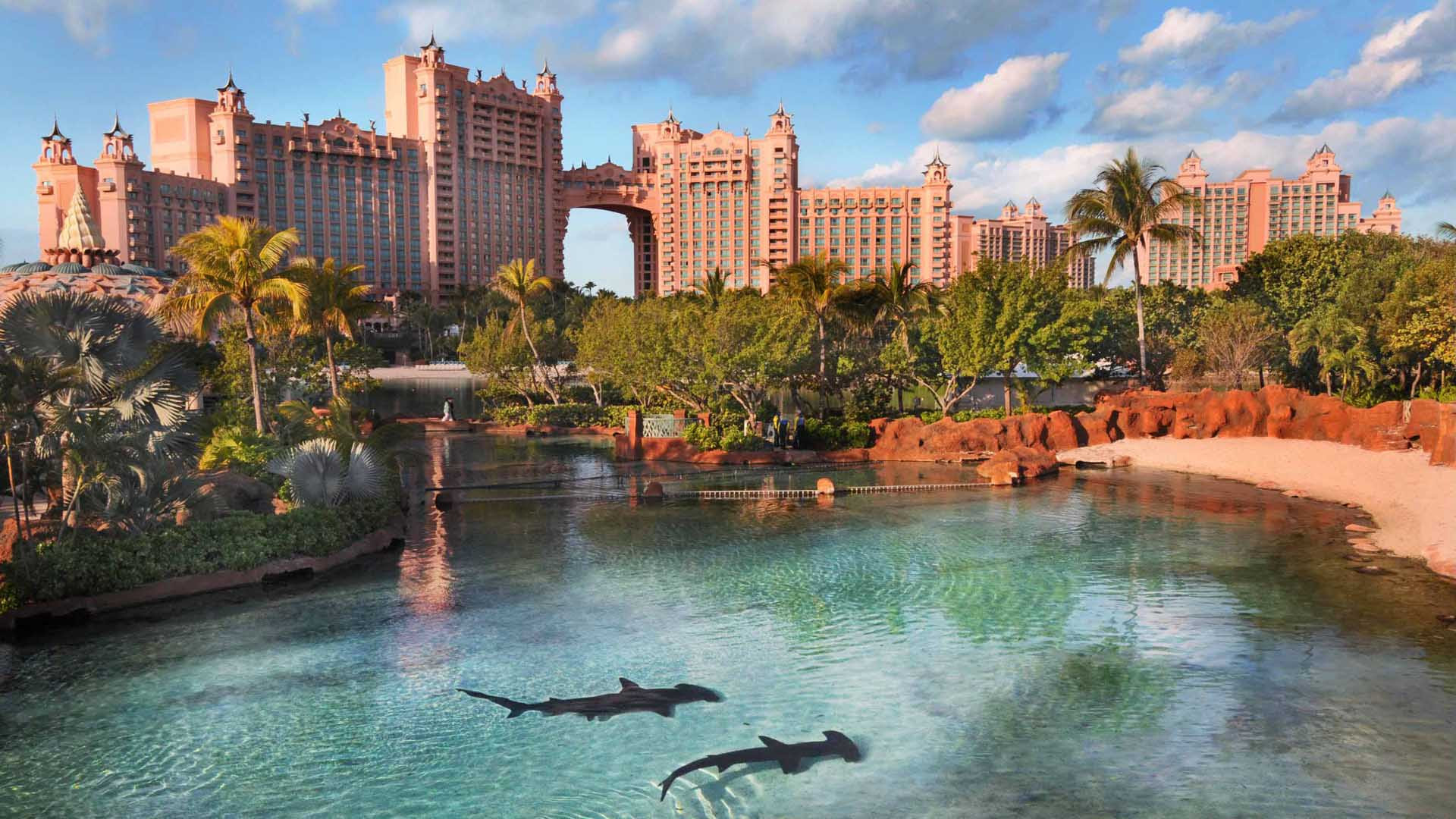 Harborside Resort at Atlantis  The Vacation Advantage The