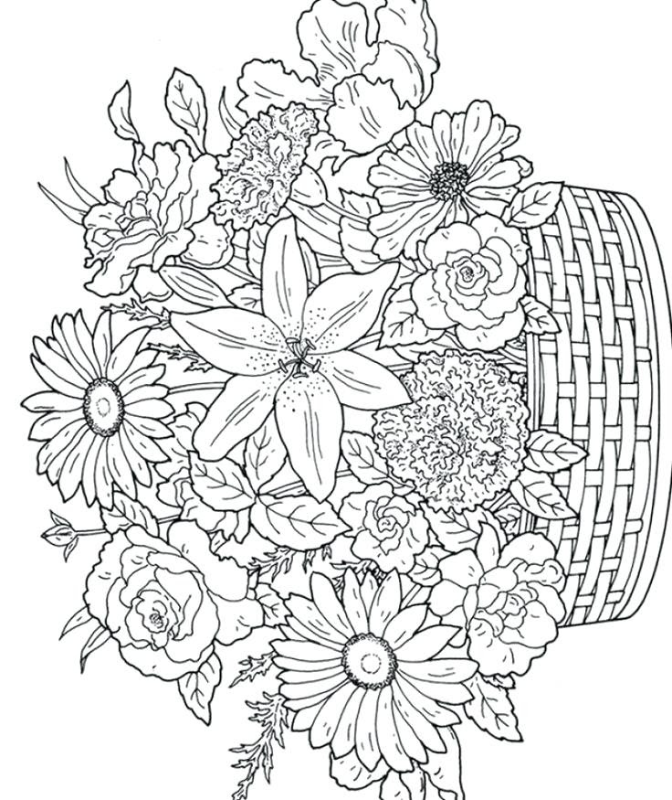 Spring Coloring Pages For Older Students at GetColorings ...