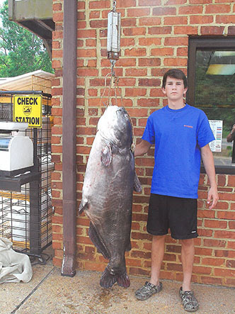 http://www.ncwildlife.org/Portals/0/EasyGalleryImages/3/162/Landon-Evans-with-blue-catfish-3_adj.jpg