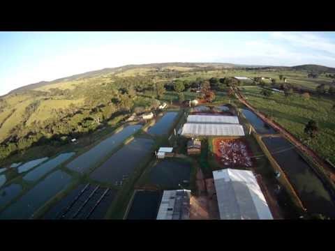 TURISMO: Fazenda Cia do Peixe em Cidade Ocidental