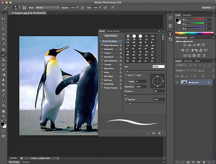 Adobe Bridge CS6 Crack License Key Full Free Download