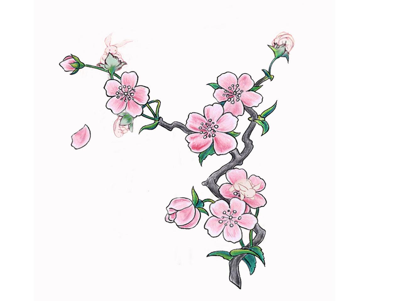 Nice Pink Cherry Blossom Tattoo Design