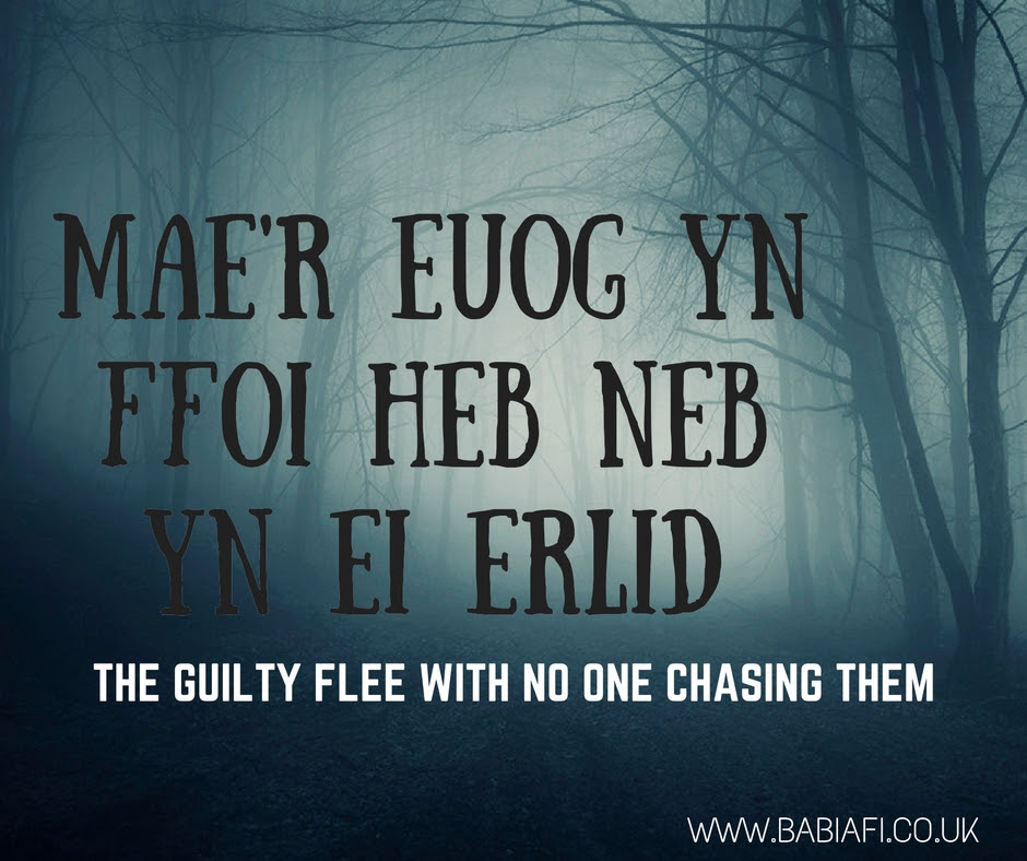 Mae'r euog yn ffoi heb neb yn ei erlid - The guilty flee with no one chasing them
