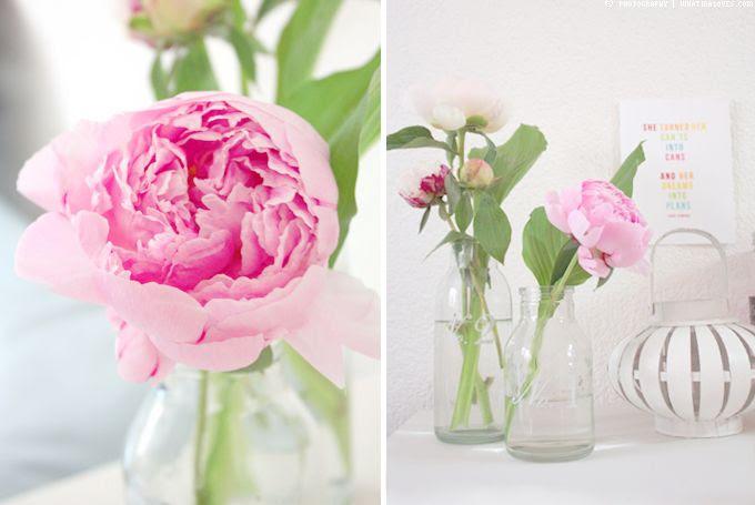 http://i402.photobucket.com/albums/pp103/Sushiina/cityglam/home3-1_zps2f177e5e.jpg