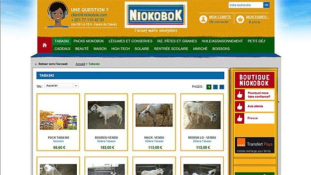 Niokobok website