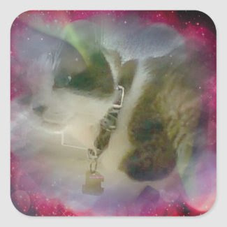 snowshoe celestial kitty square sticker